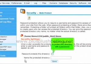 How to password protect a directory in cPanel with RVSkin