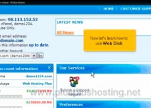 How to use web disk in cPanel with RVSkin