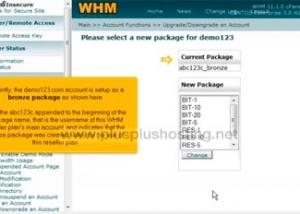 Cómo cambiar el paquete de alojamiento web en una cuenta en WHM