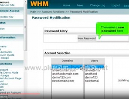 How to change your WHM password
