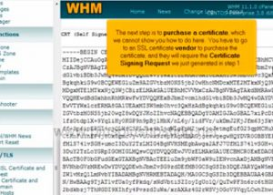 Generating and installing SSL certificates in WHM