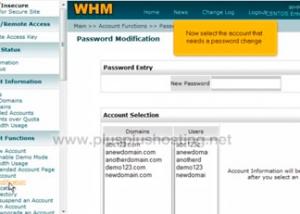 Cómo cambiar la contraseña de una cuenta en WHM