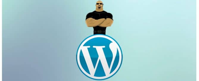 Top Plugins to Protect your WordPress
